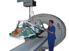Ensemble transfert patient pour scanner et IRM